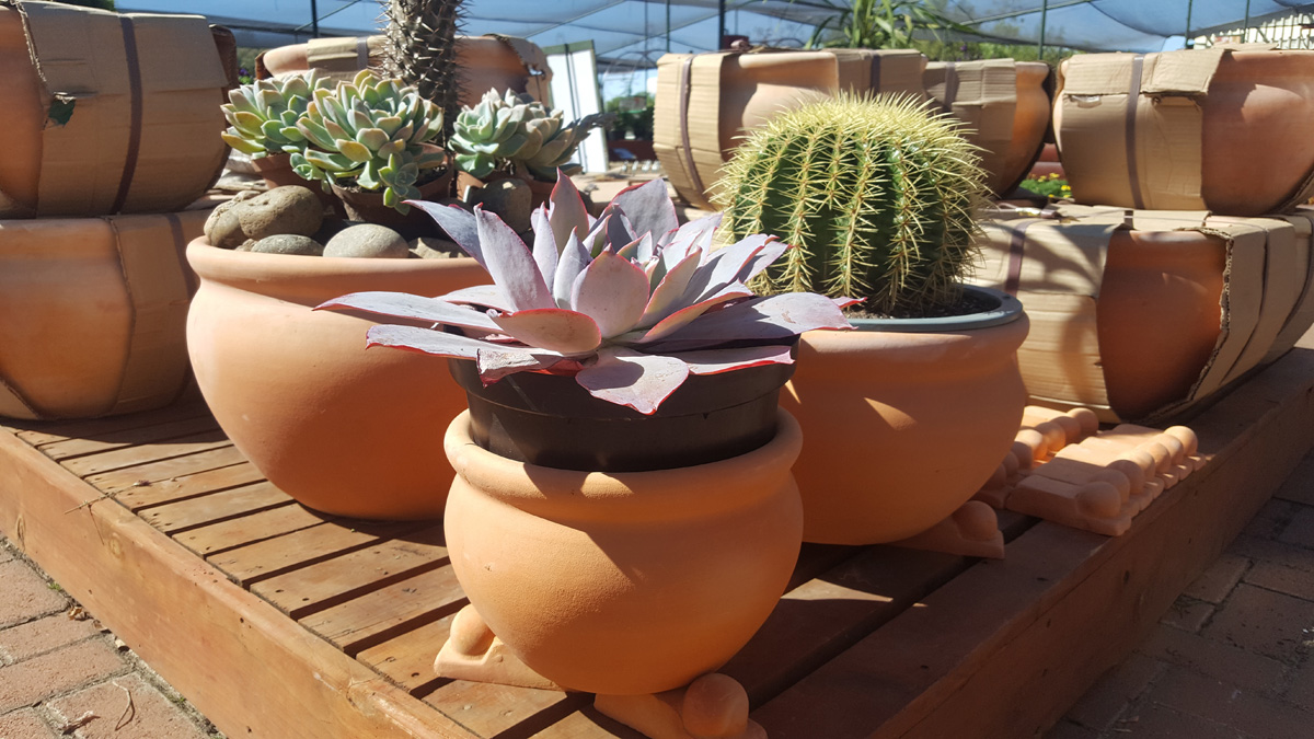 We sell a range of pots